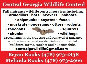 central georgia wildlife control